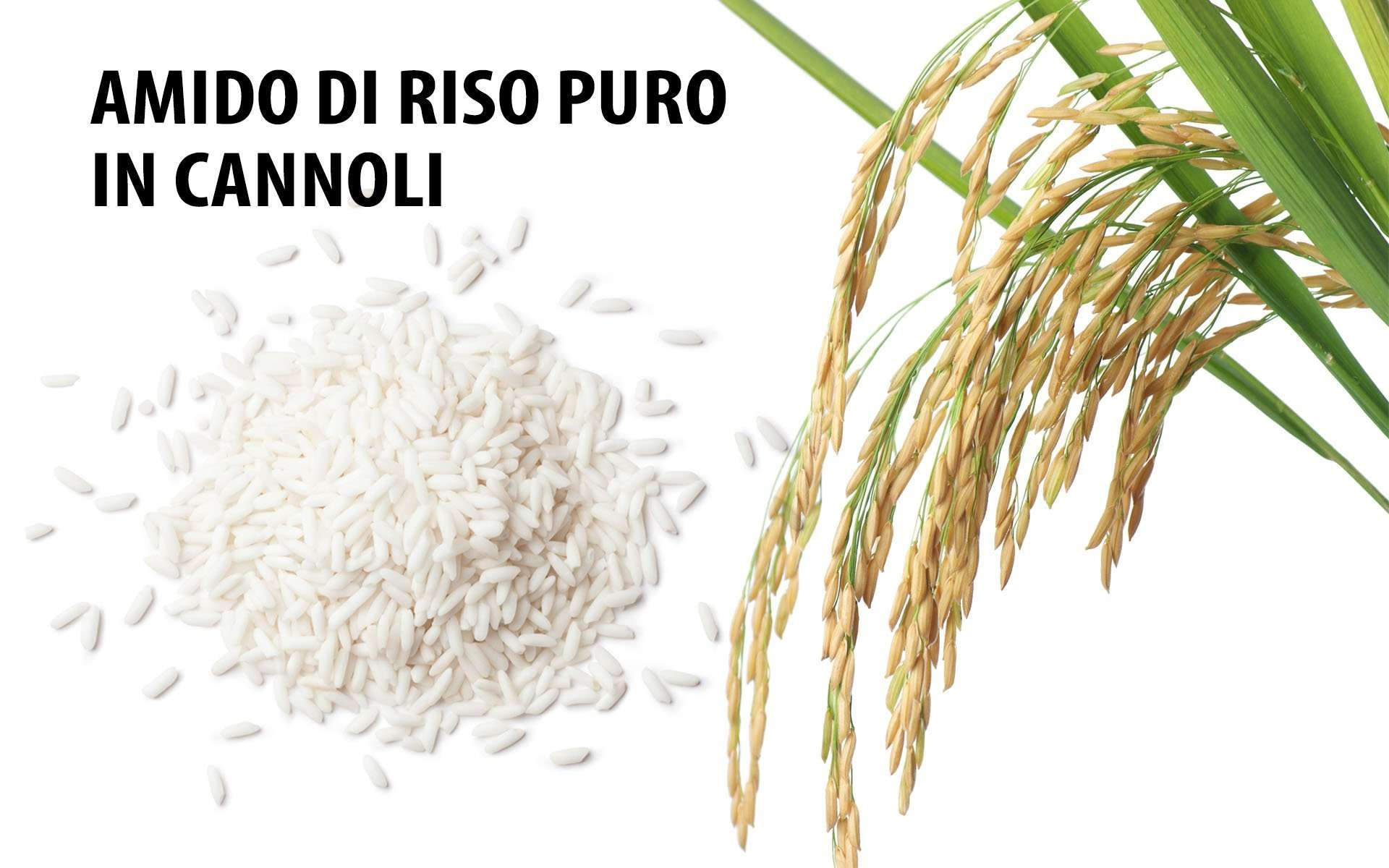 Ingrediente amido di riso puro